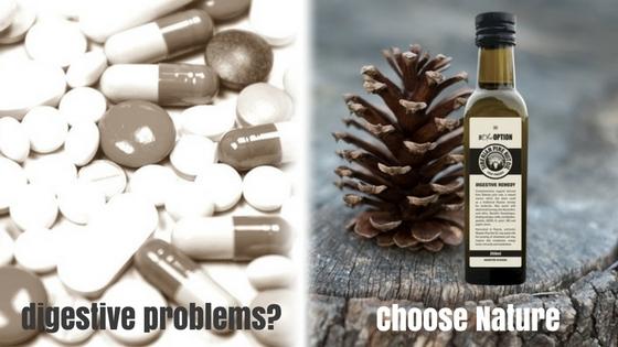 digestive remedy siberian pine nut oil
